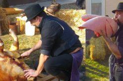 Pomana Porcului și Festivalul Pălincii, sărbătorite cu mare fast în Gyomaendrőd