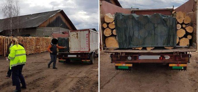 FOTO – Trupa de șoc a Poliției Huedin a confiscat o mașină și zeci de metri cubi de lemn. Bonus, amenzi usturătoare