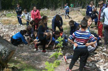 """Acțiune de împădurire în zona Beliș sub sloganul """"Împreună reîmpădurim Parcul Natural Apuseni"""""""