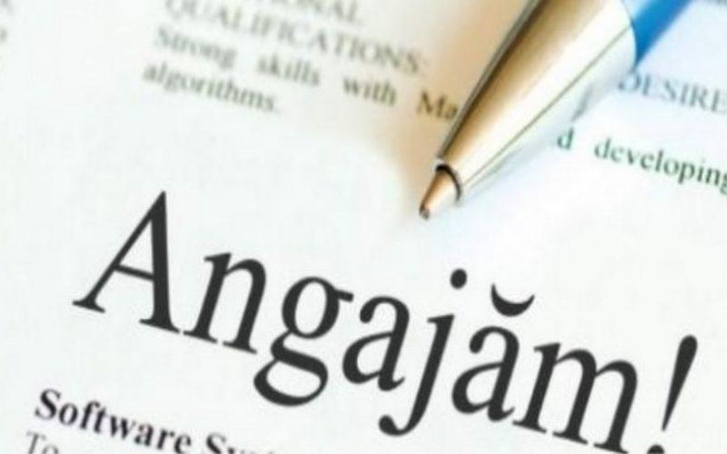 ANOFM: Locuri de muncă vacante în județul Cluj și la nivel național