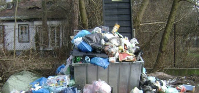 ȘOCANT! O femeie din Gârbău și-a aruncat rodul pântecelui la gunoi, ca pe o cârpă. Ce merită?