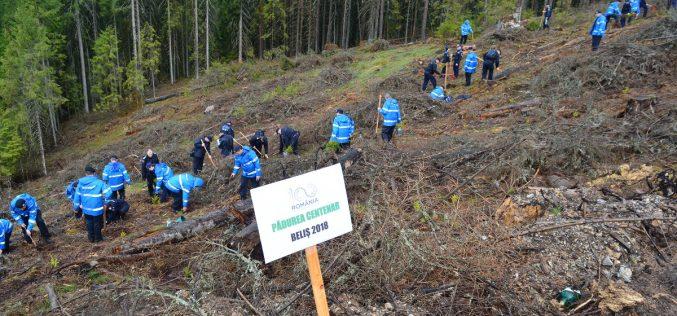 În Anul Centenar, jandarmii clujeni au participat la o acţiune de împădurire în Poiana Horea